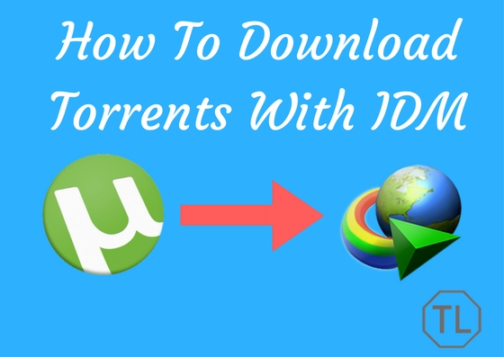How To Download Torrents With IDM