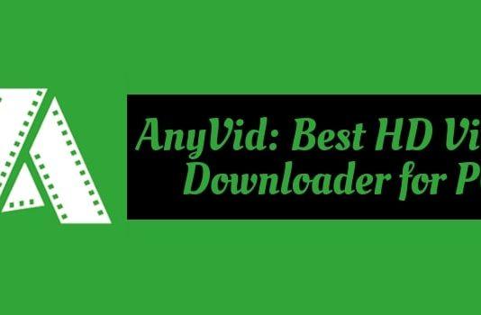 AnyVid