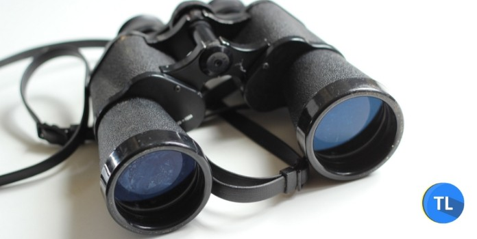 consult a detective service for background check