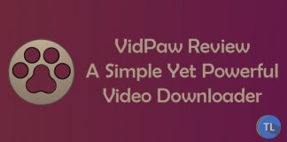 Vidpaw review